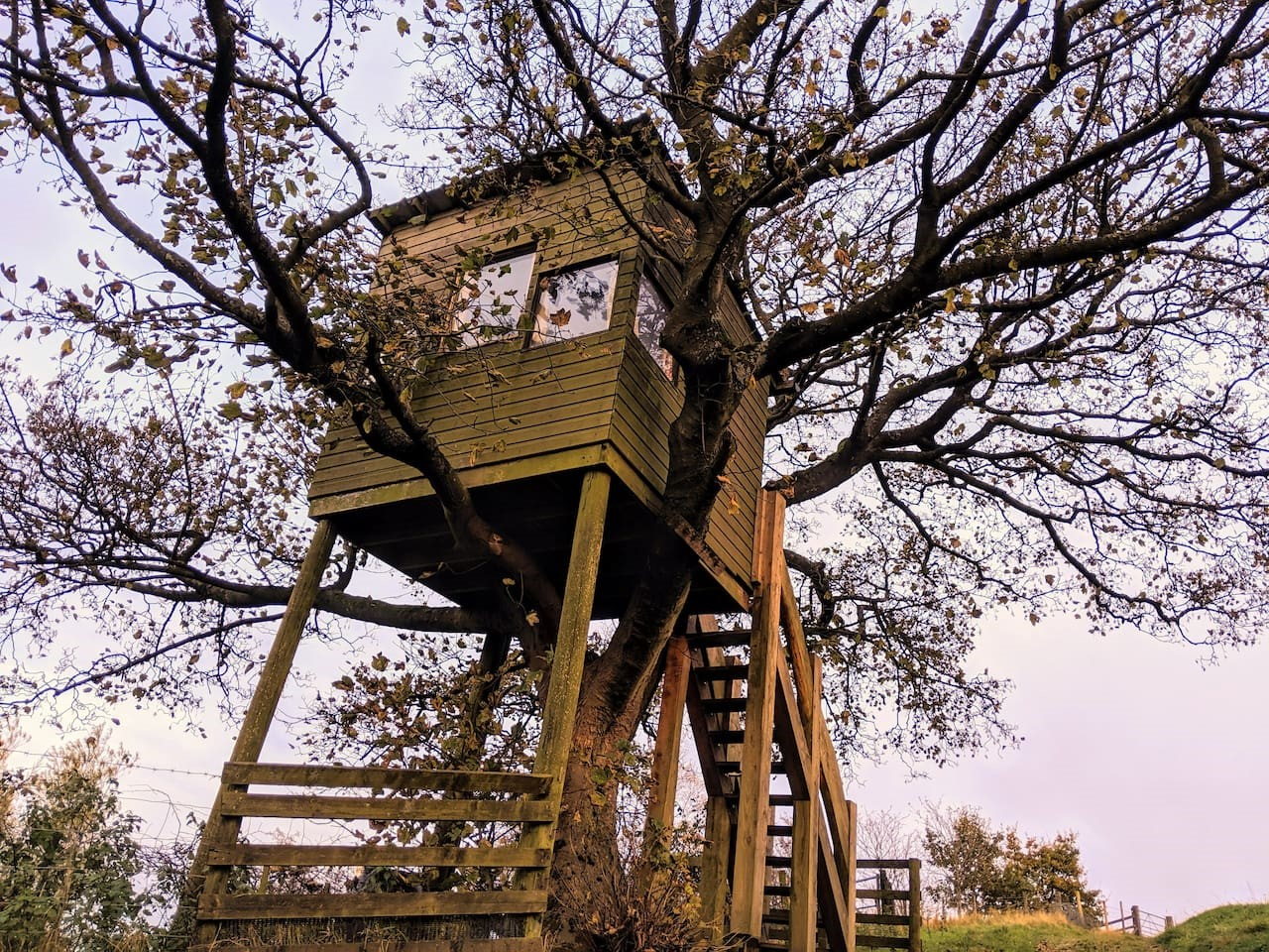 Image of tree house on Cronkshaw Fold Farm for accommodation in Rossendale page on Visit Rossendale website