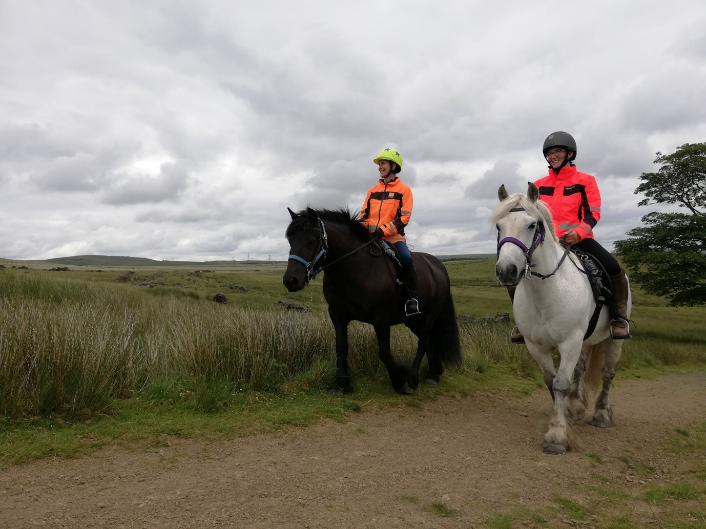 Peers Clough Pack Horses for horse riding in Rossendale page on the Visit Rossendale website